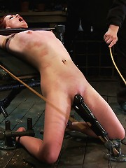 Love your cane marks.